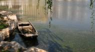 天津西沽公园风景图片_14张