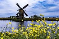 荷兰桑斯安斯风车村风景图片_14张