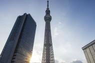 东京晴空塔高清图片_14张