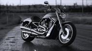 Chopper重型摩托图片_7张