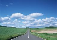 道路景观图片_37张