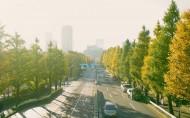 唯美城市街道公路图片_6张