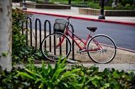 自行车图片_14张