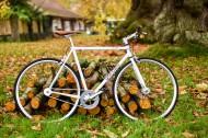 怀旧风格的自行车图片_12张