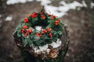 好看的圣诞花环图片_10张