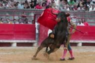 西班牙斗牛图片_13张