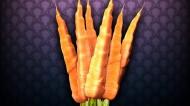 营养胡萝卜图片_20张