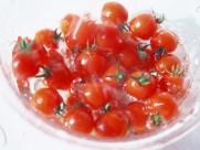 番茄西红柿图片_23张