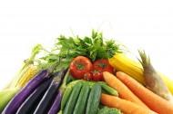 各种各样的蔬菜图片_16张
