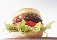 汉堡包图片_10张