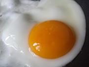 健康美味的煎蛋图片_14张