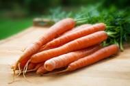 蔬菜胡萝卜图片_15张