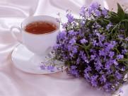 茶艺图片_20张