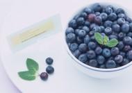 新鲜蓝莓图片_5张