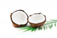 切开的夏日椰子图片_8张