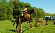 骑马跨栏比赛图片_17张