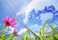 花朵和地球设计图片_22张