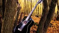 吉他图片_19张