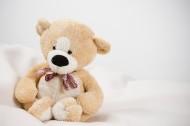 玩具熊图片_7张