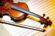小提琴图片_33张
