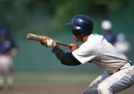 棒球运动图片_27张