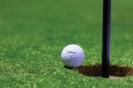 白色的高尔夫球图片_8张