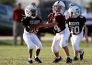 美式橄榄球之青少年图片_15张
