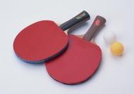 乒乓球用品图片_5张