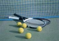 网球物品图片_21张