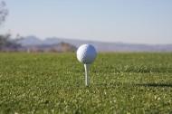 白色的高尔夫球图片_12张
