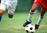 足球运动图片_36张