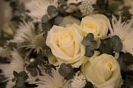 黄色玫瑰花束图片_7张