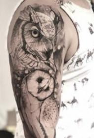 一组黑灰风格猫头鹰纹身图片