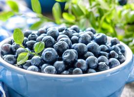 蓝莓是一种小浆果,果实呈蓝色,蓝得透明
