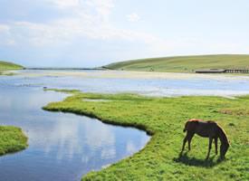 新疆禾木草原风景高清图片欣赏