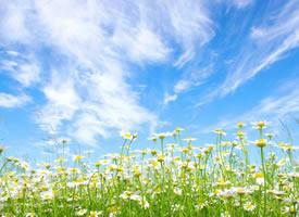 微风和煦,清新唯美的蓝天白云图片