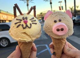 ins上颜值高超火的动物冰淇淋图片欣赏