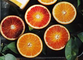 黄灿灿的橙子似一盏盏灯笼