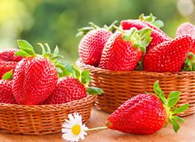 演绎莓丽、鲜嫩欲滴、香甜诱人的草莓