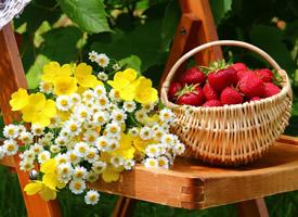 草莓吃起来爽口舒胃 让人感到清凉,柔软