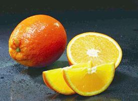 一组橙子的特写高清图片欣赏