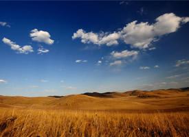 唯美金色秋天的草原高清桌面壁纸