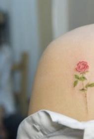 纹身小巧    小清新自然的简约小巧纹身图案