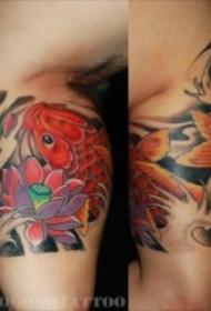 纹身鲤鱼  10组代表好运和吉祥的鲤