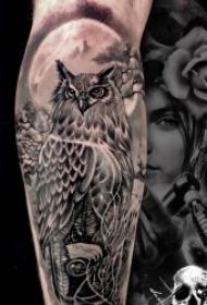 纹身猫头鹰   8款昼伏夜出的猫头鹰纹身图案