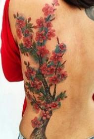 樱花纹身图案 10张优美清新纹身樱花图案