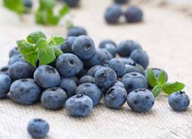 蓝莓是一颗小小的水果,颜色是紫色的
