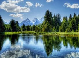 一组大自然森林风景高清图片欣赏