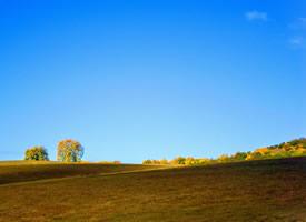 一组乌兰布统草原风景图片欣赏
