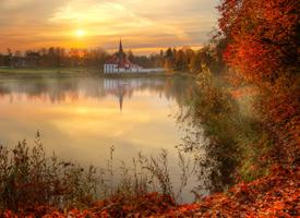 美丽森林风景图片桌面壁纸